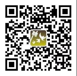 e33311921d4d3780d0de2c54275c538.png